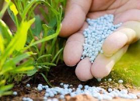 فناوری در سلامت محصولات کشاورزی نقش آفرینی می کند