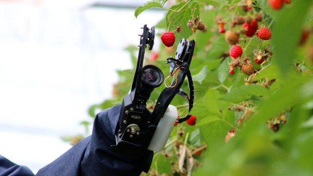 رشت؛ میزبان نخستین دوره مسابقات ملی ربات های کشاورزی