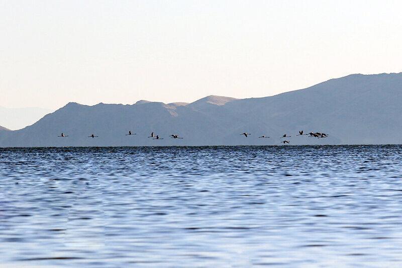 دریاچه ارومیه در آستانه افزایش وسعت تا 3 هزار کیلومترمربع