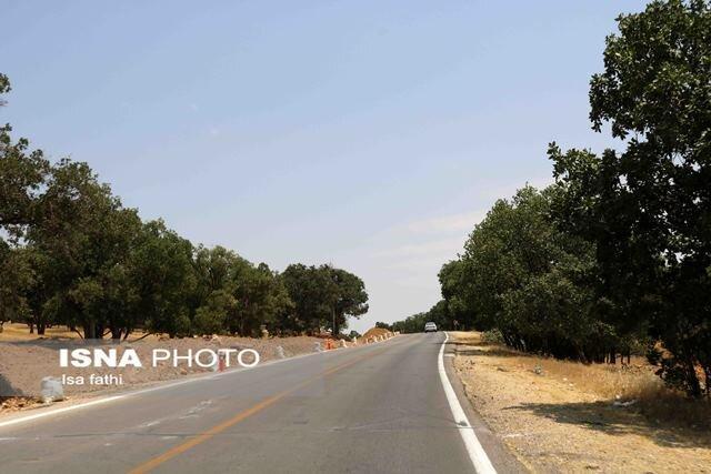 فرماندار دلگان: نداشتن راه مناسب سد مستحکم توسعه منطقه است