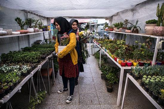 بهترین باغ گل های تهران کدامند؟