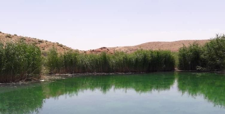 ورود سرمایه گذار برای ایجاد زیر ساخت های گردشگری در چشمه معدنی تلخاب سرخه