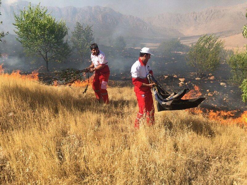 خبرنگاران آتش سوزی جنگل های گاچال کوهدشت مهار شد