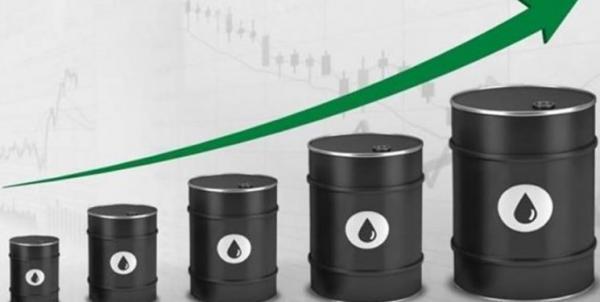 نزدیک شدن قیمت نفت به 74 دلار
